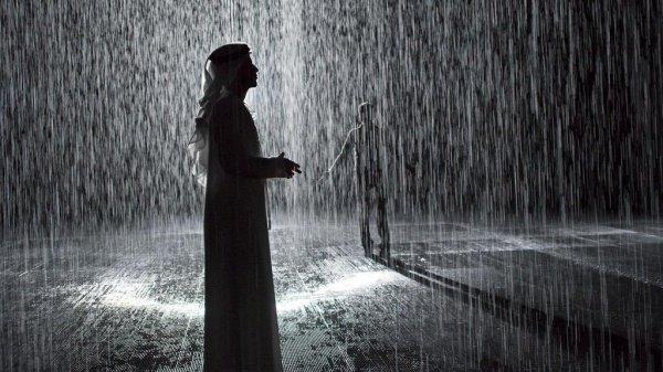 фото картинки дождь