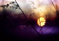 Российский космонавт запечатлел «лунный закат» (ВИДЕО)