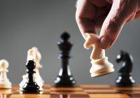 Ученые: Шахматы продлевают жизнь
