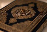 Призыв «переделать» Коран вызвал международный скандал