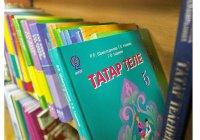 СПЧ РФ: закон о добровольном изучении языков подорвет межнациональный мир
