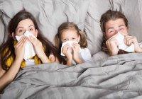 Создано универсальное лекарство от простуды
