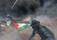 Попытки причислить погибших в Газе к террористам назвали кощунством