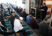 Имамы из мусульманских стран начали работу в России