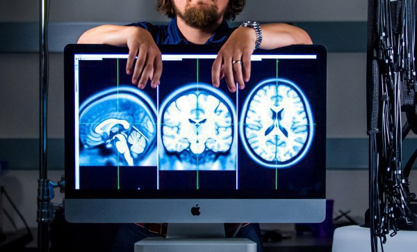 Такая конструкция, по словам нейробиологов, позволяет в кратчайшие сроки начать восстановление отдельных участков мозга