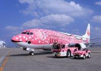 В Японии самолет начал разваливаться прямо в небе