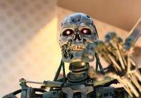 В Европе на роботов-убийц потратят $600 млн