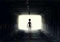 Ученые придумают язык для общения с инопланетянами