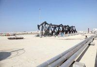 Татарстан может принять участие в разработке нефтяных месторождений в Бахрейне