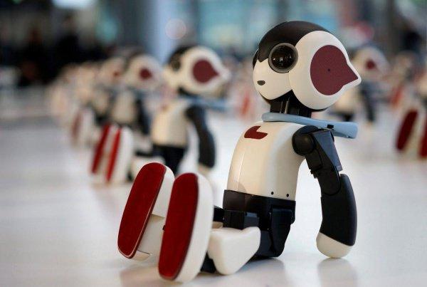 Умные машины будут интегрированы в человеческую среду и сильно зависимы от человека