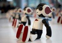 Эксперты: Роботы не будут уничтожать человечество