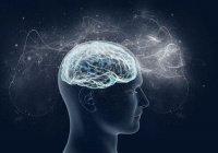 В России создали новый магнитный стимулятор мозга
