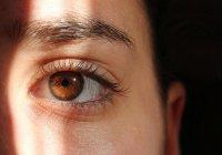 На 3D-принтере впервые в истории напечатали роговицу глаза (ВИДЕО)