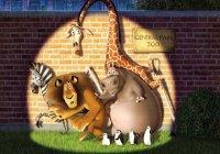 В Германии из зоопарка сбежали 6 хищников