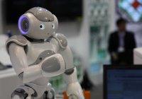 В Корее роботов научат чувствовать прикосновения