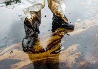 В ХМАО появилась нефтяная река (ВИДЕО)