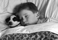 Ученые из Японии рассказали об опасности долгого сна