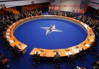В НАТО рассказали, почему Катар не сможет стать членом альянса