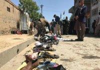 В Афганистане назвали число жертв террористов
