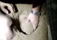 Похороненный заживо младенец пролежал под землей 8 часов и выжил
