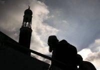 В Австрии закрывают мечети и высылают имамов