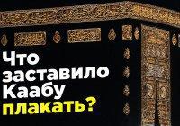 Что заставило Каабу горько разрыдаться?