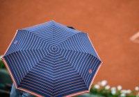 Летающий зонтик создали в Японии (ВИДЕО)