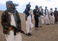 «Талибан» объявил о перемирии на Рамадан