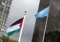 Резолюция по защите палестинского народа будет рассмотрена в ООН