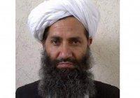 Лидер «Талибана» захотел переговоров с США