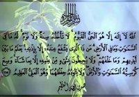 Как заработать саваб, которого удостаиваются пророки?
