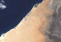 NASA показало, как Дубай изменился за последние 34 года (Фото)
