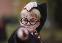 Поклонникам «Гарри Поттера» запретили Гарри Поттера