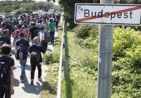 В Венгрии ввели уголовную ответственность за помощь мигрантам