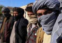 Афганский генерал: половина главарей «Талибана» хочет перестать воевать
