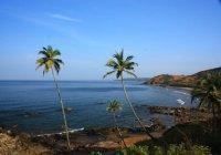 Селфи запретят на пляжах Гоа