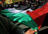 СМИ: арабские страны поддержат план Трампа по Палестине в обход Аббаса