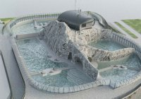 У морских котиков в Москве появится волновой бассейн