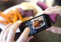 Испорченную еду можно определить при помощи смартфона