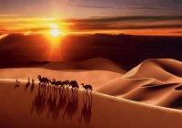 Почему один из сподвижников отказался слушать проповедь Умара ибн аль-Хаттаба?