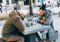 Шахматист из Тюмени сыграл с бездомными