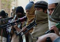 СМИ сообщили, в какой стране проходят подготовку «лучшие» боевики «Талибана»