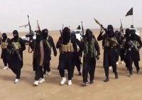 СМИ: ИГИЛ объявило охоту на своих русскоязычных пропагандистов