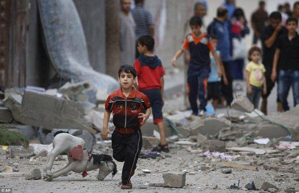 Более двух десятков детей стали жертвами протестов в секторе Газа.