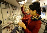 Раскрыты секреты еды в самолетах