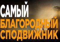 Кто, по мнению Пророка (мир ему), был самым благородным из сподвижников?