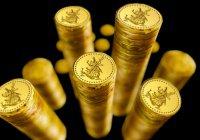 В Иране с двумя тоннами золота задержали «монетного султана»