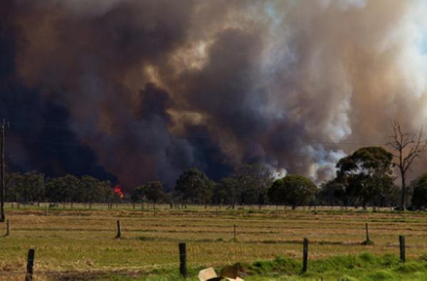В результате небольшой огонь охватил 7 гектаров земли