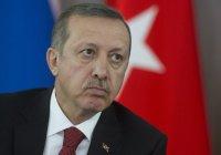 Турецкие СМИ обнародовали данные об имуществе Эрдогана