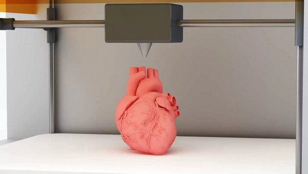 При этом следующим этапом станет печать полноразмерного объемного сердца